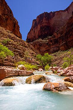 Hikers in Havasu Creek, Grand Canyon National Park, Arizona, USA, North America.