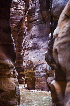 Woman hiking through a gorge, Wadi Mujib, Jordan, Middle East