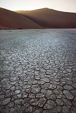 Cracked soil at Dead Vlei, around Sossusvlei, Namib Naukluft National Park, Namibia, Namib desert, Africa