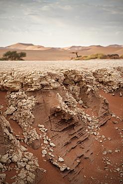Detail of dried out soil at Dead Vlei, around Sossusvlei, Namib Naukluft National Park, Namibia, Namib desert, Africa