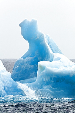 Icebergs, Antarctic Sound, Weddell Sea, Antarctica