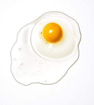 Raw egg on a white background, Food, Nahrung
