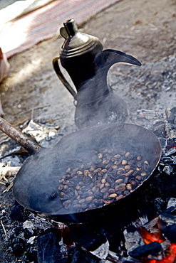 Coffee beans roasting over a fire, Negev, Israel