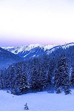 Winterly snowcovered landscape in the Kleinwalser valley in Vorarlberg at the blue hour, Vorarlberg, Austria
