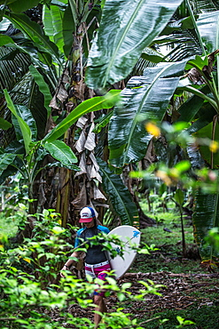 Young female surfer walking through a thick jungle, Sao Tome, Sao Tome and Principe, Africa