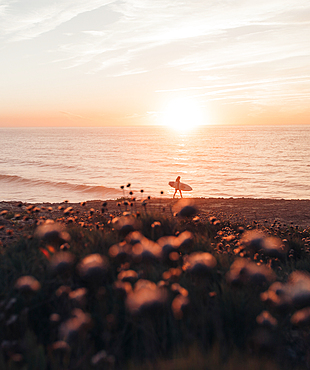 Surfer goes to the sea at sunrise, Portugal, surfing, vacation