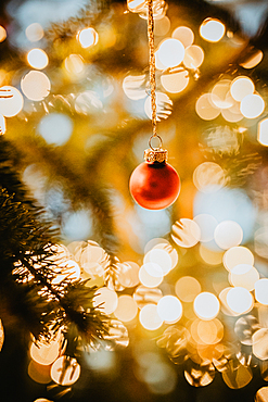 red bauble hangs on the illuminated Christmas tree, Christmas, family