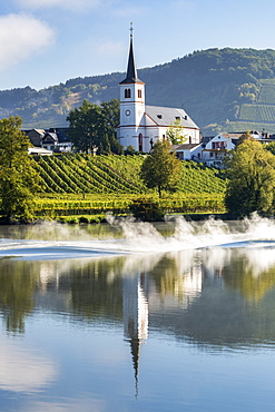 White church with tall steeple reflecting on a river with vineyards along sloped banks and blue sky, Kesten, Germany
