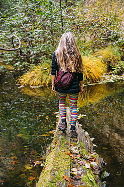A woman walks across a log over a tranquil stream in autumn, California, United States of America