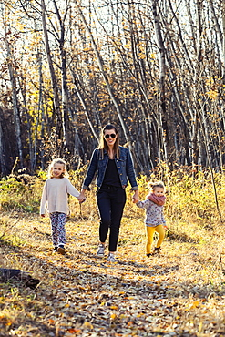 A mother and her two little daughters walking through the woods and holding hands in a city park on a warm fall evening, Edmonton, Alberta, Canada