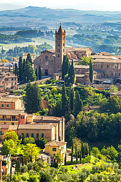 Stone buildings and church on landscape covered with trees and rolling hills in the background, Siena, Tuscany, Italy