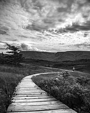 Black and white image of a wooden boardwalk stretching across a landscape with a man in the distance, Bonavista, Newfoundland and Labrador, Canada