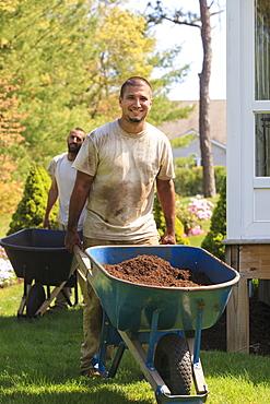 Landscapers carrying mulch to a garden in wheelbarrow