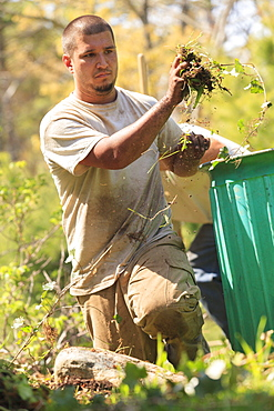 Landscaper clearing weeds from a garden