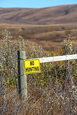 A yellow 'No Hunting' sign on a wooden fence post in a rural area; Alberta, Canada