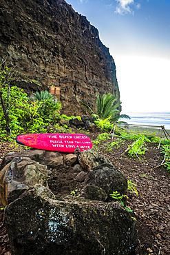Community garden at Kalalau Beach, cliff and ocean are in the background, Na Pali Coast State Park; Kauai, Hawaii, United States of America
