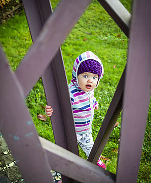 A toddler girl standing outside on grass and looking through a metal sculpture at the camera; Whidbey Island, Washington, United States of America