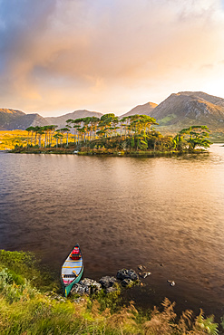 Canoe on the bank of a lake pointing towards an island with pine trees with an epic sunrise in the background; Connemara, County Galway, Ireland