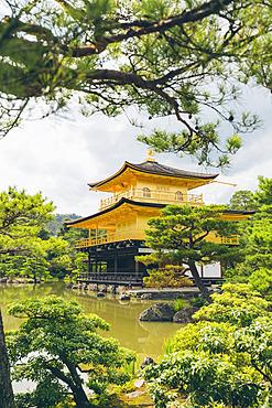 Temple of the Golden Pavilion, Kinkaku-ji; Kyoto, Kansai, Japan