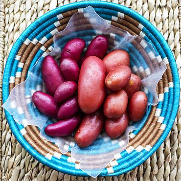 Woven basket full of fresh potatoes; Studio