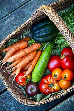 Basket of a variety of fresh produce; Mayne Island, Gulf Islands, British Columbia, Canada