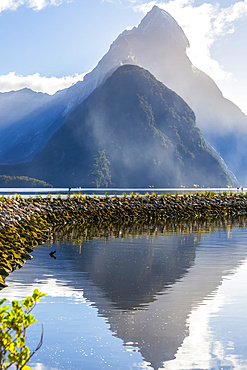 Mitre Peak reflects into the waters of Milford Sound, Fiordland National Park; Southland, New Zealand