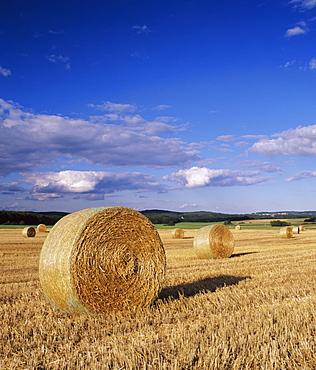 Straw bales, Swabian Alb, Baden Wurttemberg, Germany, Europe
