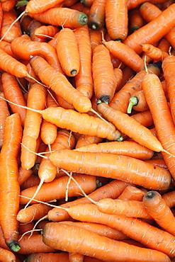 Carrots at a market stall, weekly market, market place, Esslingen, Baden Wurttemberg, Germany, Europecurves adjustments for more contrast and subtle vignette