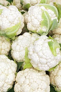 Cauliflower at a market stall, weekly market, market place, Esslingen, Baden Wurttemberg, Germany, Europecurves adjustment