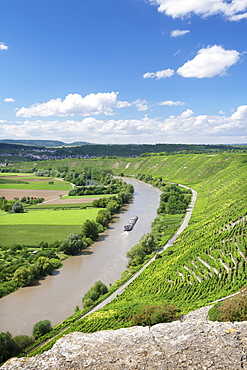 Hessigheim Felsengarten (Rock Gardens), Neckartal Valley, River Neckar, Baden Wurttemberg, Germany, Europe