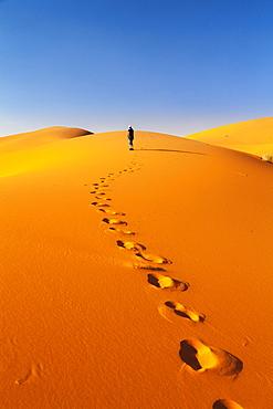 Sand Dunes, Erg Chebbi, Sahara Desert, Southern Morocco, Morocco, Africa
