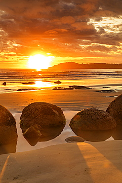 Moeraki Boulders at sunrise, Otago, South Island, New Zealand, Pacific
