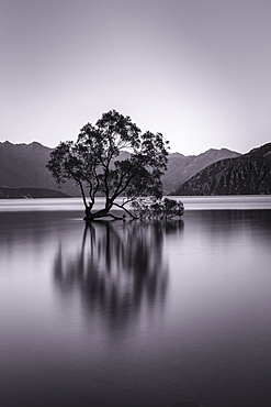Lake Wanaka, Blue Hour, Mount-Aspiring National Park, UNESCO World Heritage Site, Otago, South Island, New Zealand, Pacific