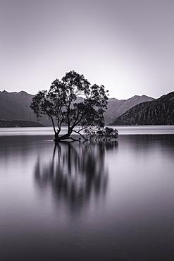 Lake Wanaka, Blue Hour, Mount-Aspiring National Park, UNESCO World Heritage Site, Otago, South Island, New Zealand, Pacific
