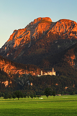 Neuschwanstein Castle at sunset, Schwangau, Allgau, Schwaben, Bavaria, Germany, Europe
