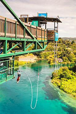Bungee Jumping, Waikato River, Taupo, Waikato, North Island, New Zealand, Pacific