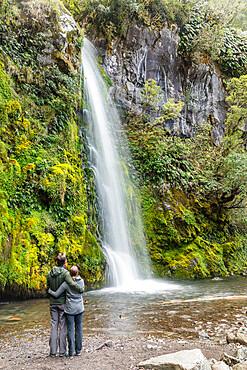 Dawson Falls Waterfall, Egmont-National Park, Taranaki, North Island, New Zealand, Pacific