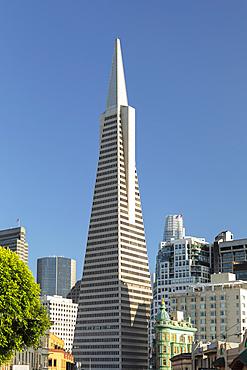 Transamerica Pyramid, Financial District, San Francisco, California, USA