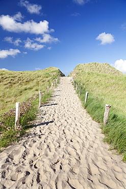 Path through dunes, Sylt, North Frisian Islands, Nordfriesland, Schleswig Holstein, Germany, Europe