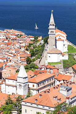 High angle view of the old town with the cathedral of St. George, Piran, Istria, Slovenia, Europe