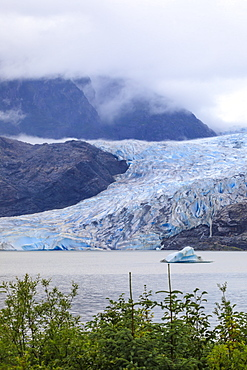 Mendenhall Glacier and Lake, with iceberg, bright blue ice, forest and mist, from Visitor Centre, Juneau, Alaska, United States of America, North America