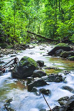 Rainforest stream in Corcovado National Park, Osa Peninsula, Costa Rica, Central America