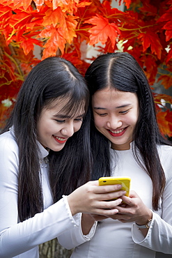 Two Vietnamese friends wearing traditional Ao Dai dresses and sharing a mobile phone, Hue, Vietnam, Indochina, Southeast Asia, Asia