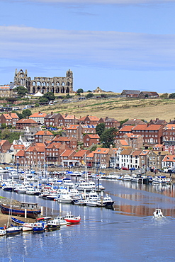 The harbour and the ruined abbey on the hill behind, Whitby, Yorkshire, England, United Kingdom, Europe