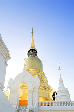 Chedis (stupas) a the temple of Wat Suan Dok, Chiang Mai, Thailand, Southeast Asia, Asia