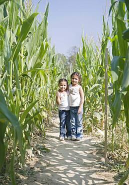 Hispanic sisters in corn field