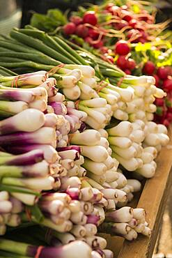 Close up of fresh produce for sale in market