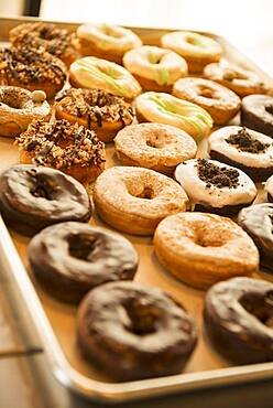 Close up of donuts for sale in bakery
