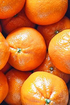 Close up of pile of oranges
