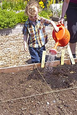 Caucasian mother and son watering plants in garden